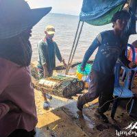 Fishermen bringing their last catch