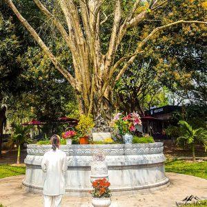 One pilar pagoda, woman praying