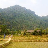Silviu walking in the Rice fields