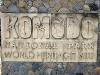 Welcome to Komodo National Park, World Heritage Site.