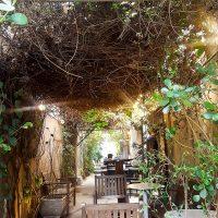 Coffee in teh shade