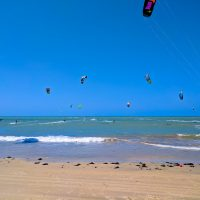 So many kite-surfers!