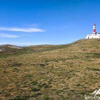 Punta Arenas -35